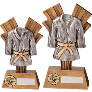 Xplode Martial Arts Award