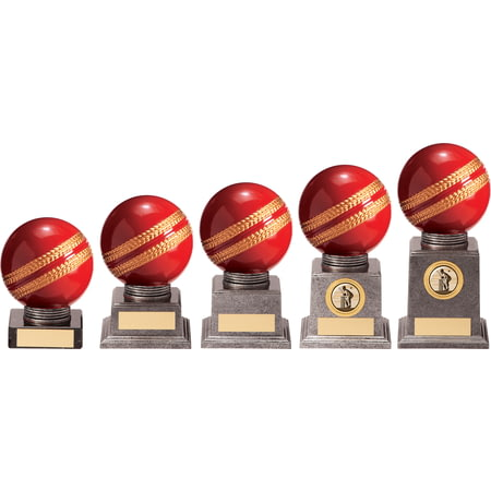 Valiant Legend Cricket Award